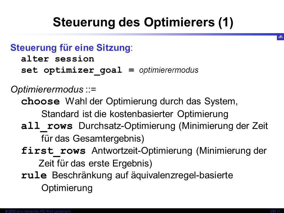Steuerung des Optimierers (1)