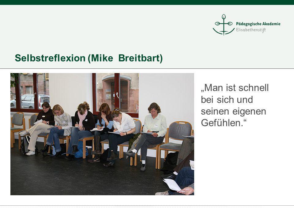 Selbstreflexion (Mike Breitbart)
