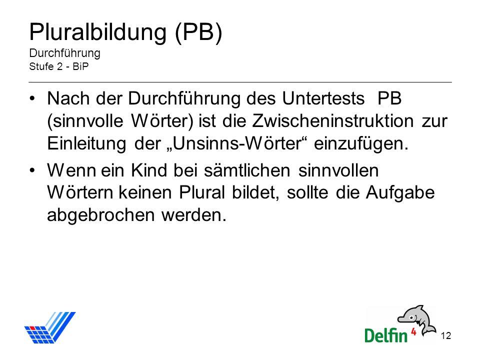 Pluralbildung (PB) Durchführung Stufe 2 - BiP