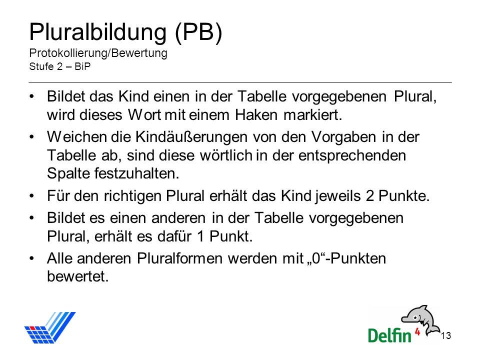 Pluralbildung (PB) Protokollierung/Bewertung Stufe 2 – BiP