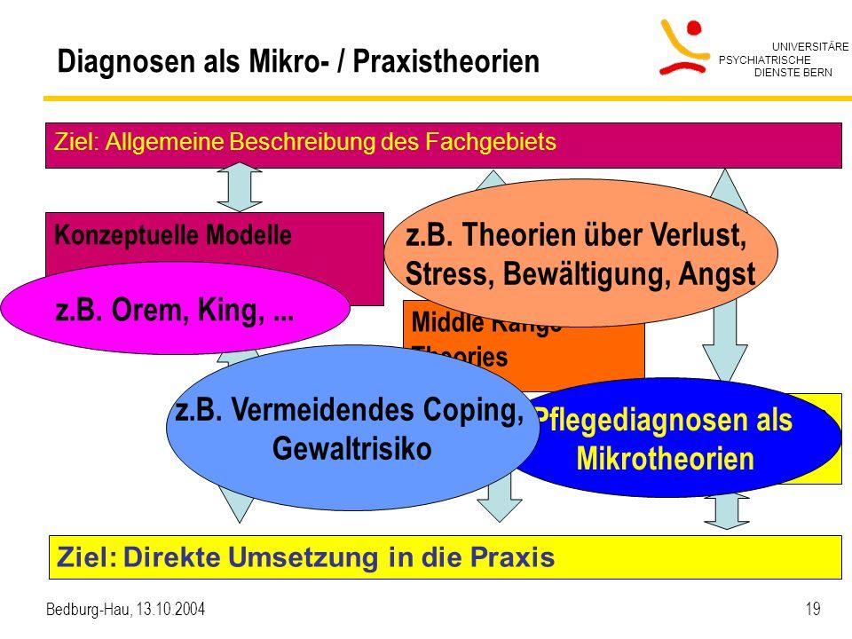 Diagnosen als Mikro- / Praxistheorien