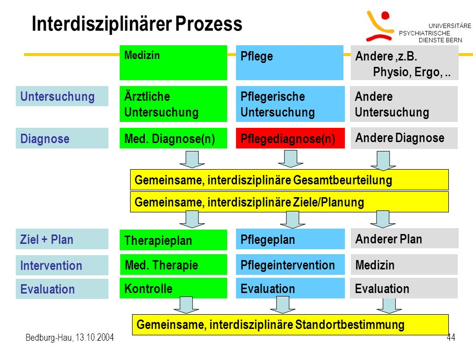 Interdisziplinärer Prozess