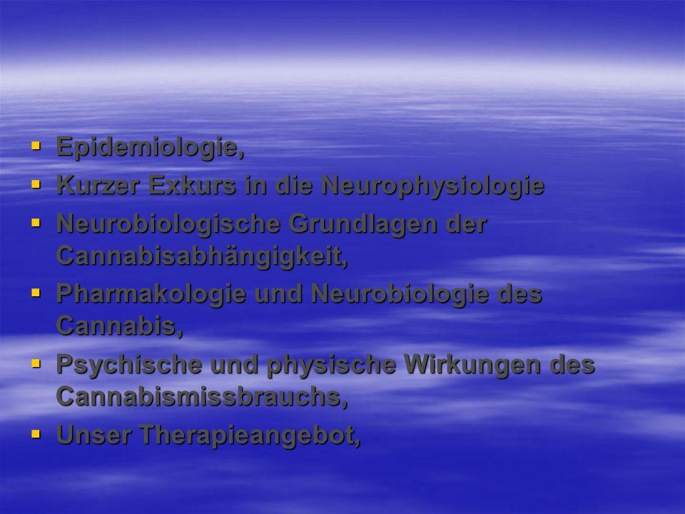 Epidemiologie,Kurzer Exkurs in die Neurophysiologie. Neurobiologische Grundlagen der Cannabisabhängigkeit,