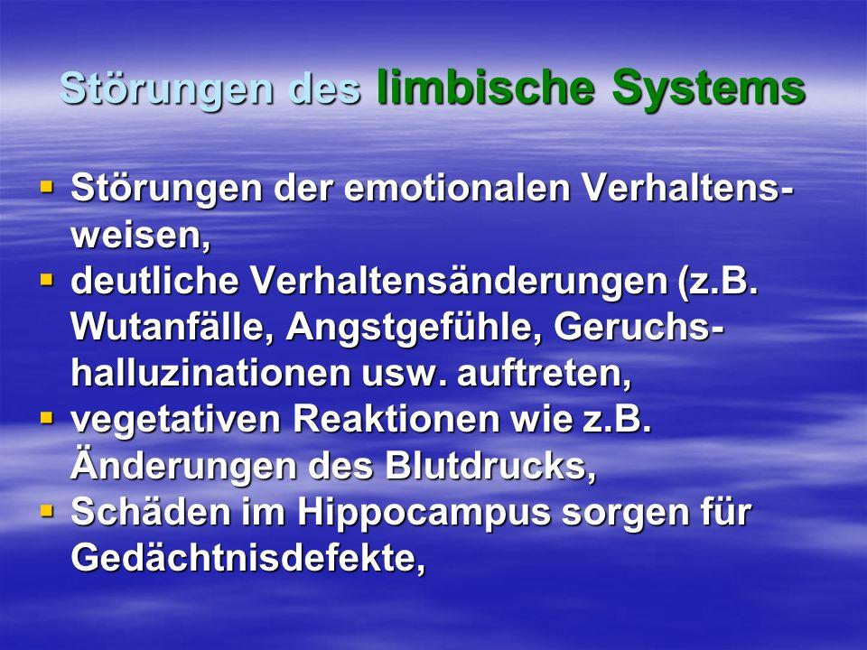 Störungen des limbische Systems