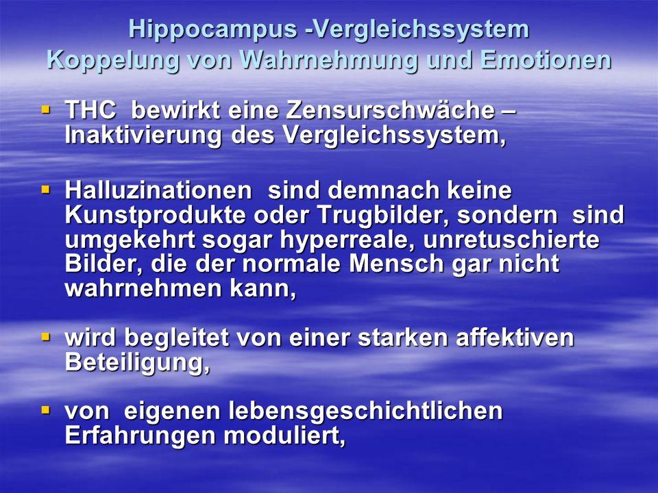 Hippocampus -Vergleichssystem Koppelung von Wahrnehmung und Emotionen
