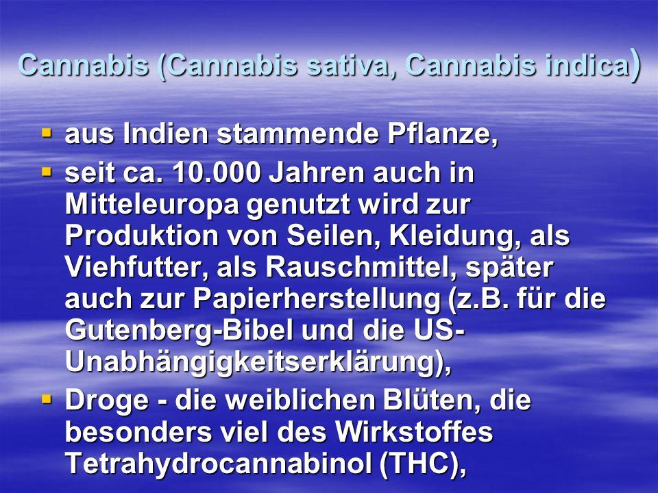 Cannabis (Cannabis sativa, Cannabis indica)
