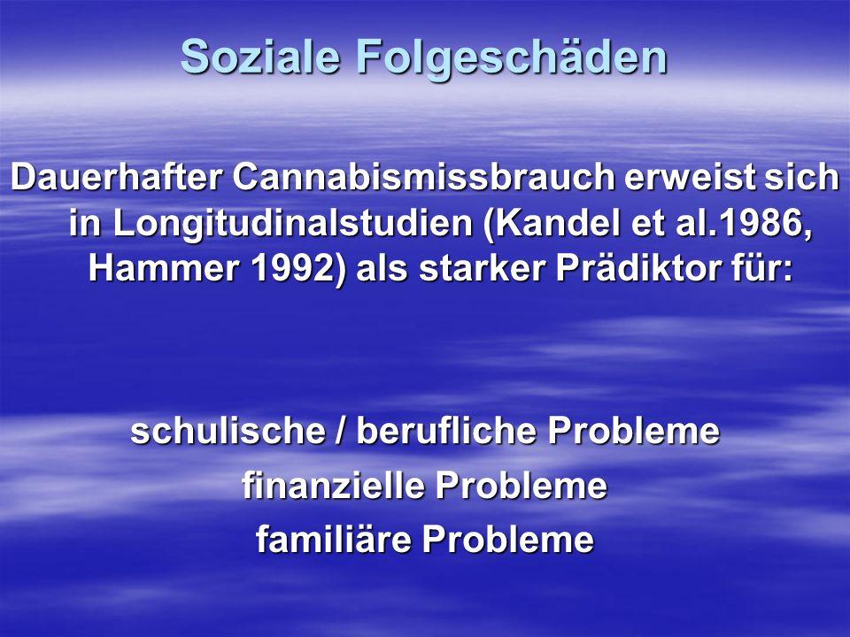 schulische / berufliche Probleme