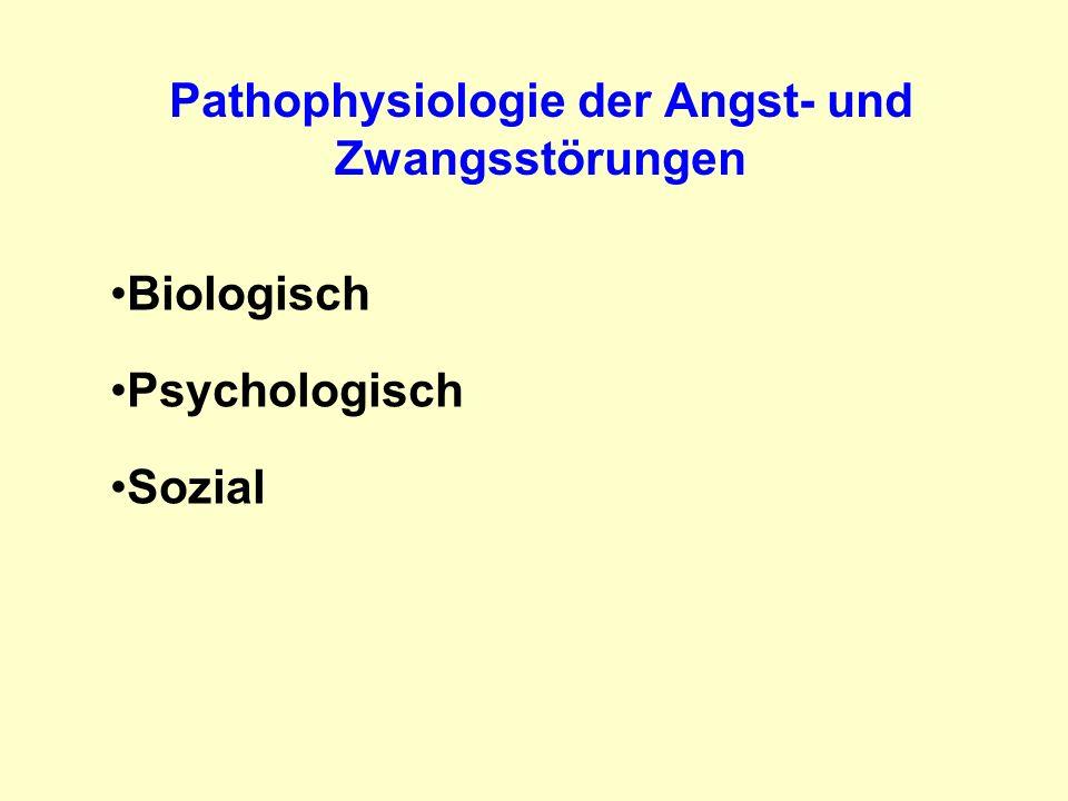 Pathophysiologie der Angst- und Zwangsstörungen