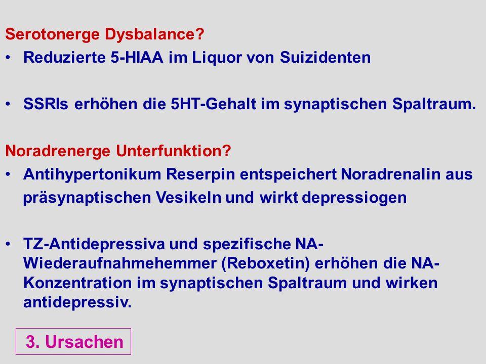 3. Ursachen Serotonerge Dysbalance