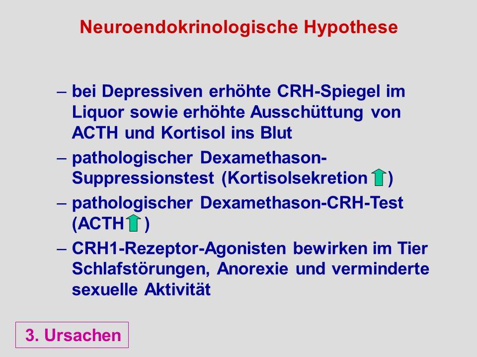 Neuroendokrinologische Hypothese