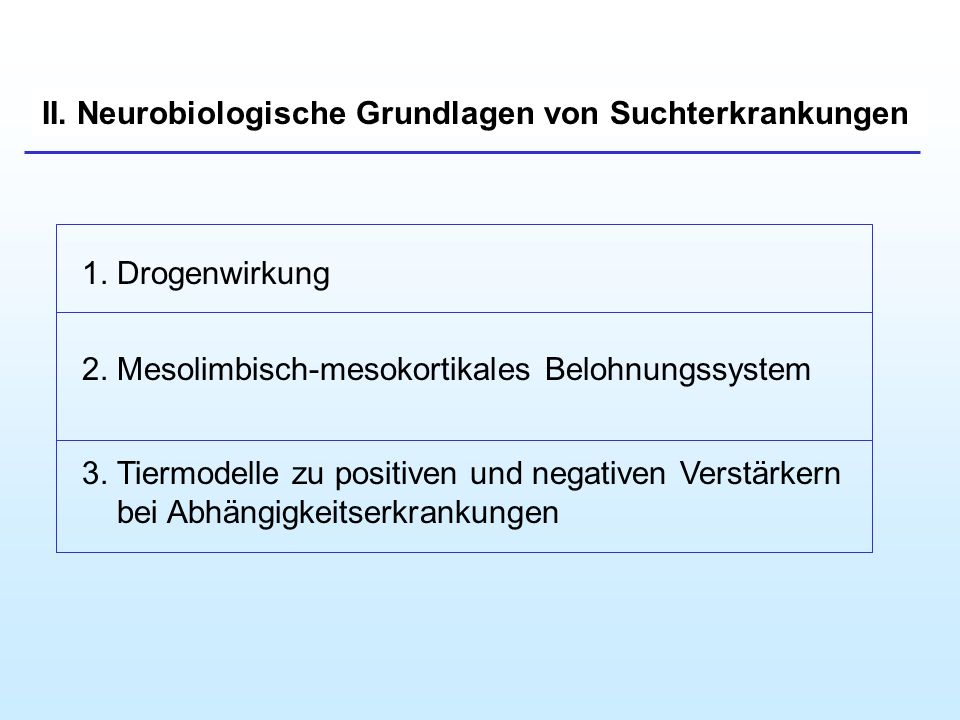 II. Neurobiologische Grundlagen von Suchterkrankungen