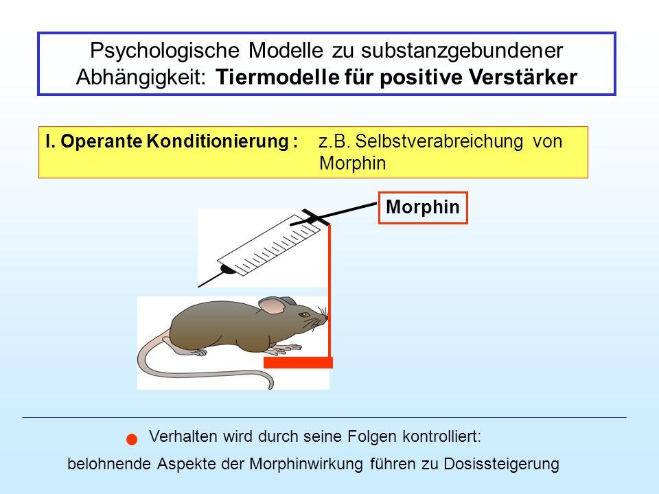 Psychologische Modelle zu substanzgebundener Abhängigkeit: Tiermodelle für positive Verstärker