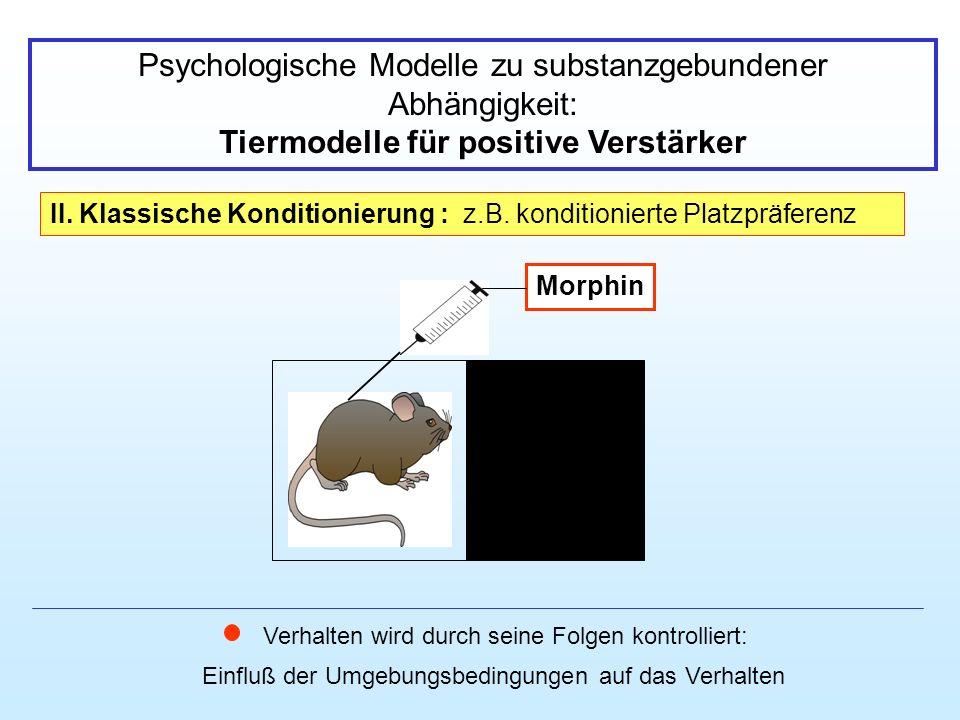 Tiermodelle für positive Verstärker