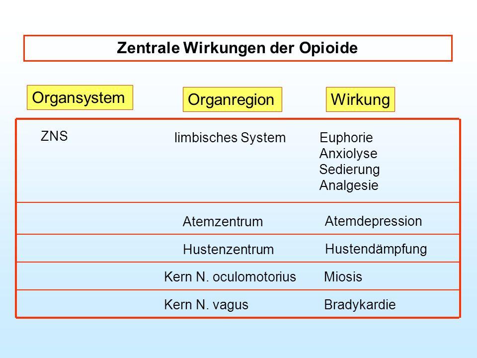 Zentrale Wirkungen der Opioide