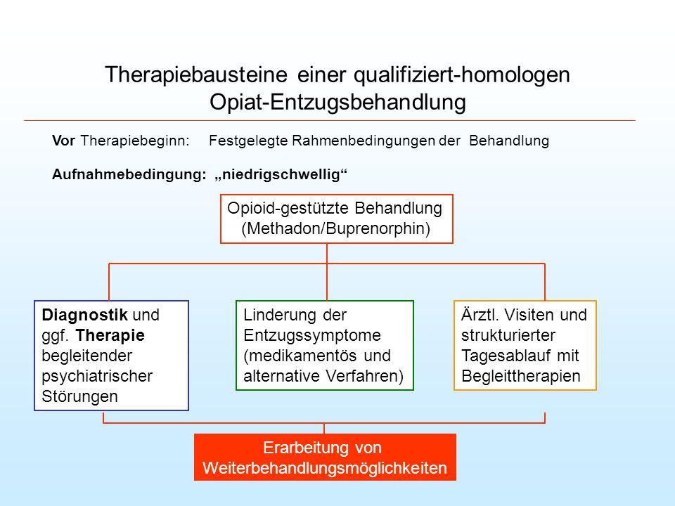 Therapiebausteine einer qualifiziert-homologen Opiat-Entzugsbehandlung