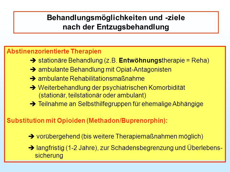Behandlungsmöglichkeiten und -ziele nach der Entzugsbehandlung