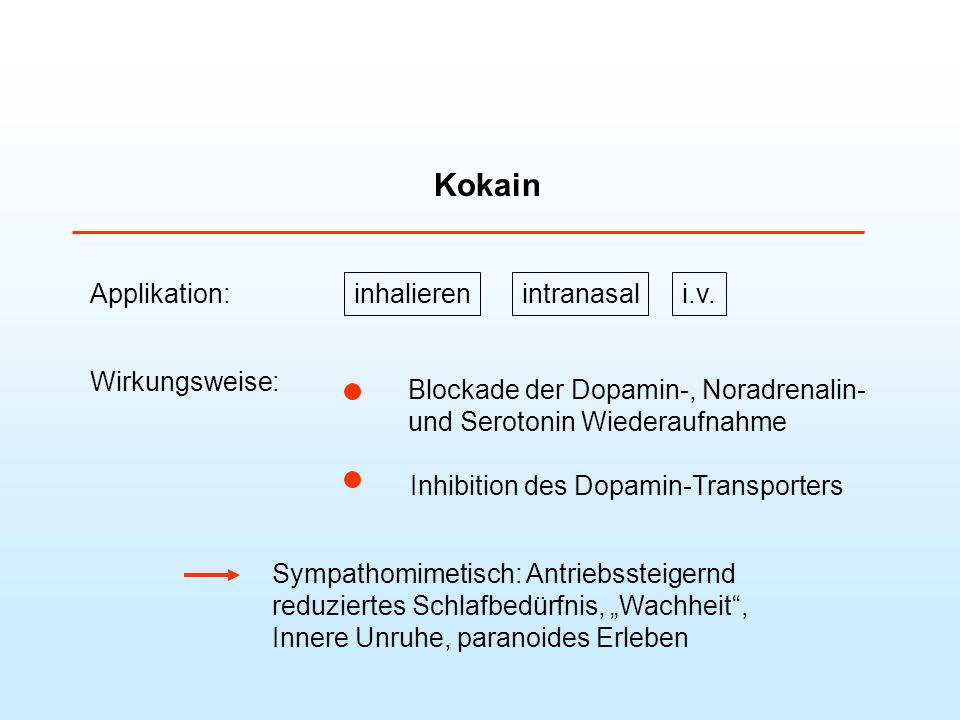 Kokain Applikation: inhalieren intranasal i.v. Wirkungsweise: