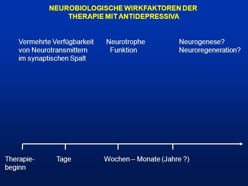 NEUROBIOLOGISCHE WIRKFAKTOREN DER THERAPIE MIT ANTIDEPRESSIVA