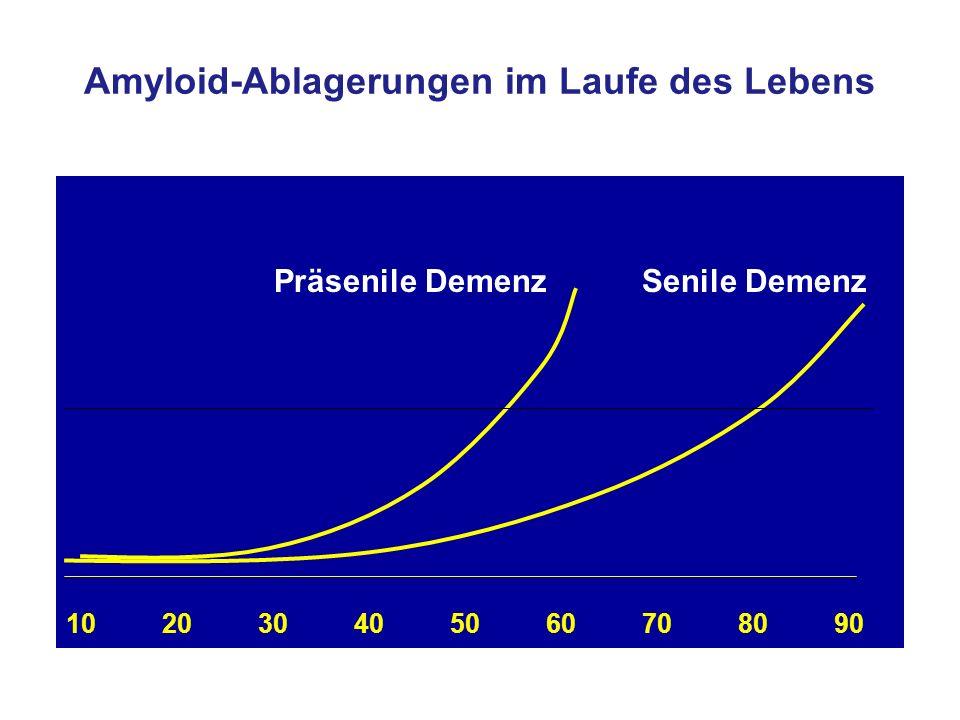 Amyloid-Ablagerungen im Laufe des Lebens