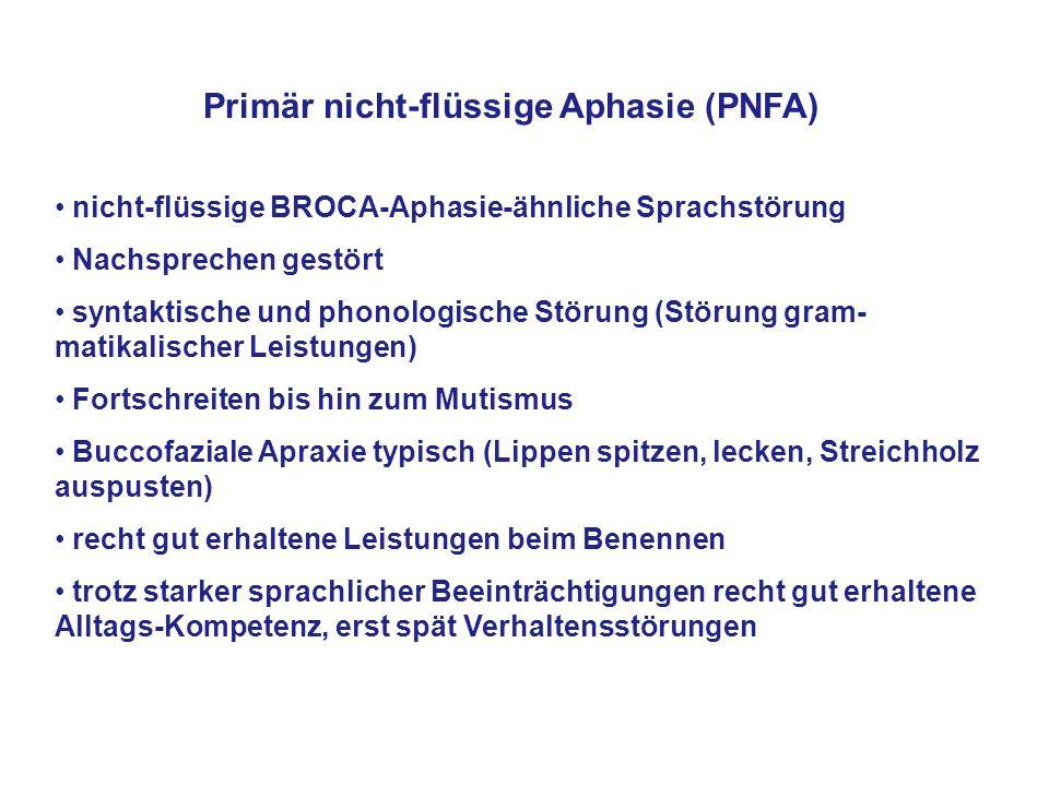 Primär nicht-flüssige Aphasie (PNFA)