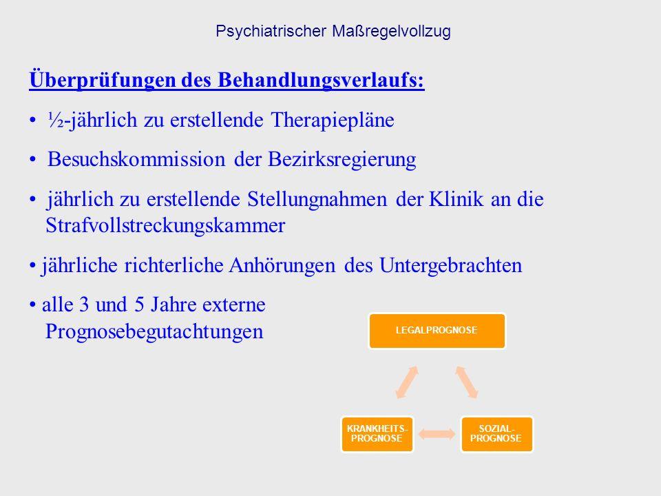 Psychiatrischer Maßregelvollzug