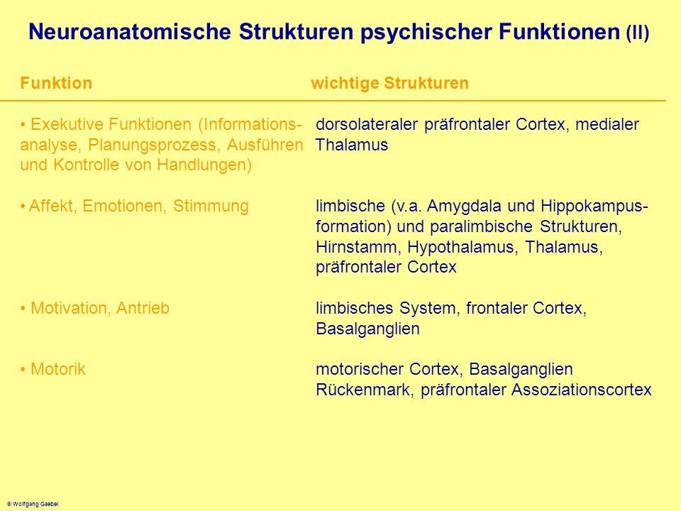 Neuroanatomische Strukturen psychischer Funktionen (II)