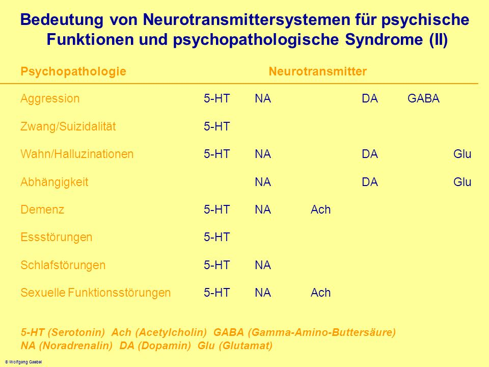 Bedeutung von Neurotransmittersystemen für psychische