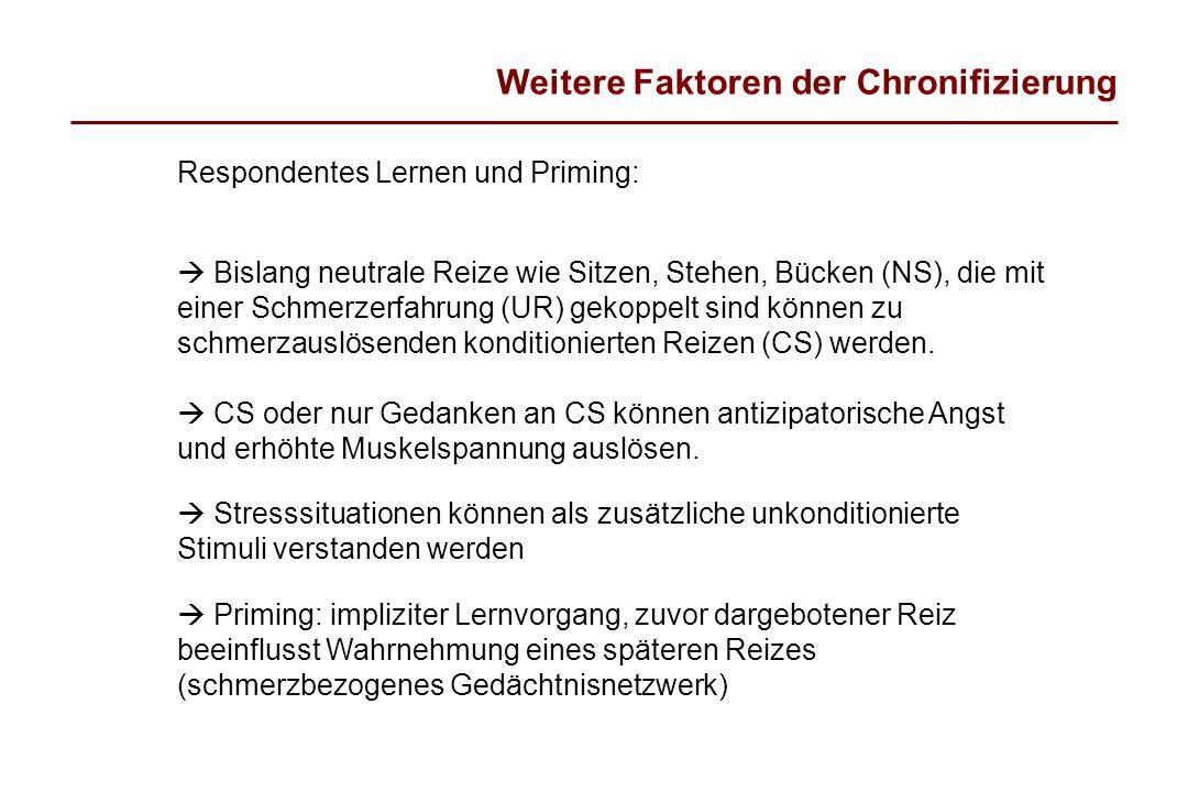 Weitere Faktoren der Chronifizierung