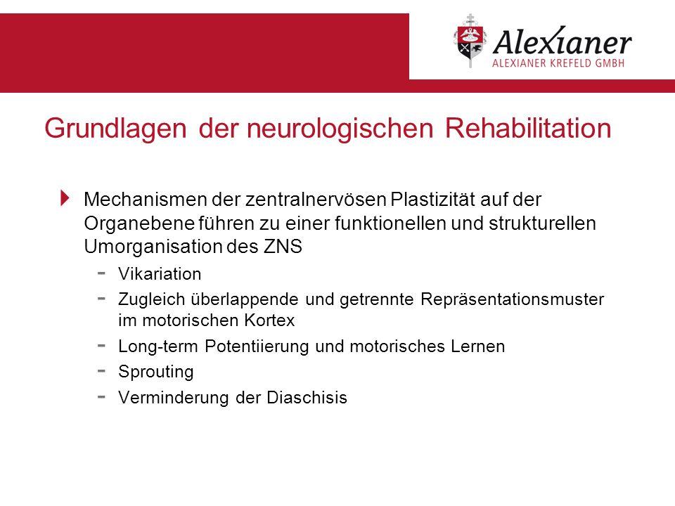 Grundlagen der neurologischen Rehabilitation