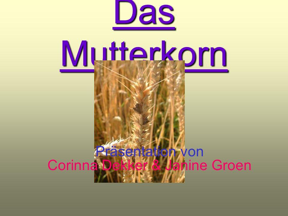 Präsentation von Corinna Dekker & Janine Groen