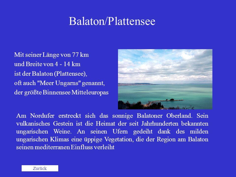 Balaton/Plattensee Mit seiner Länge von 77 km und Breite von 4 - 14 km