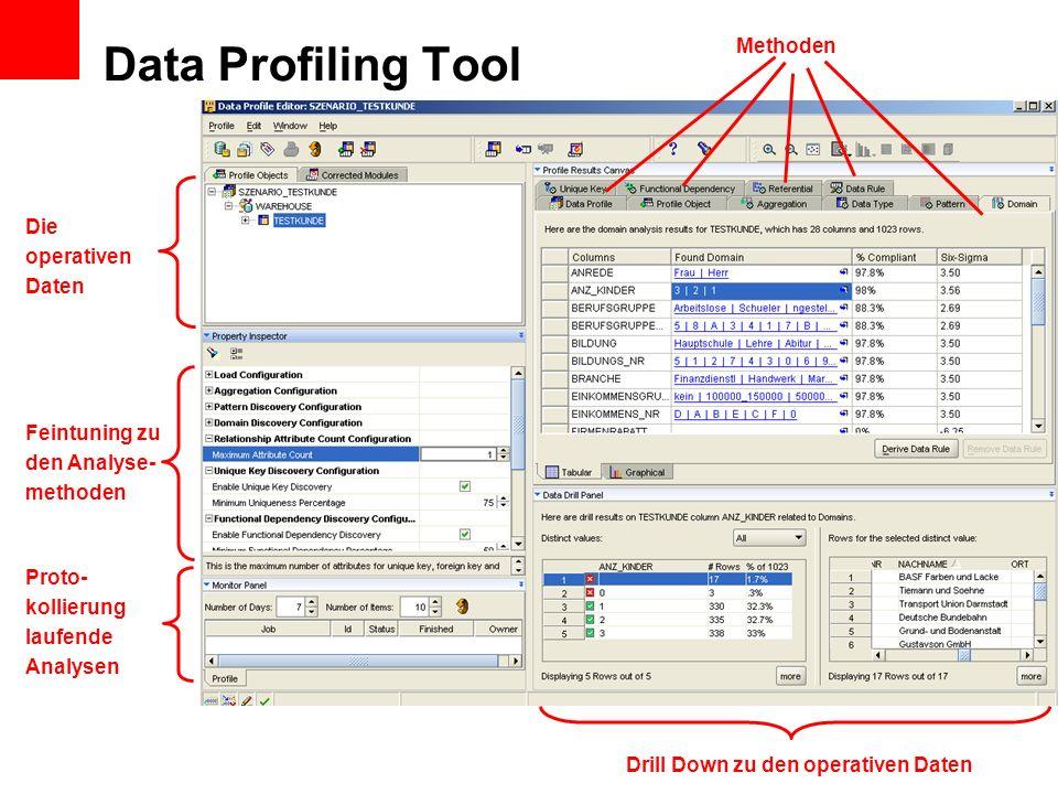 Data Profiling Tool Methoden Die operativen Daten Feintuning zu