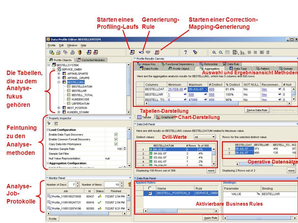 Starten eines Profiling-Laufs Generierung- Rule