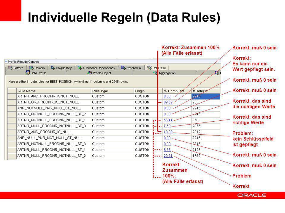 Individuelle Regeln (Data Rules)