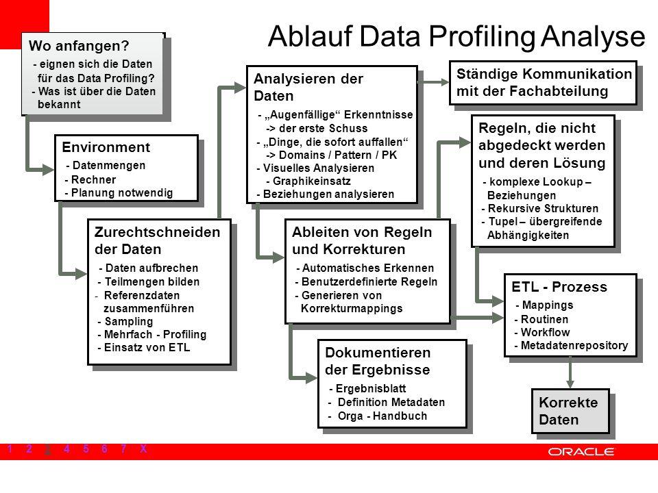 Ablauf Data Profiling Analyse