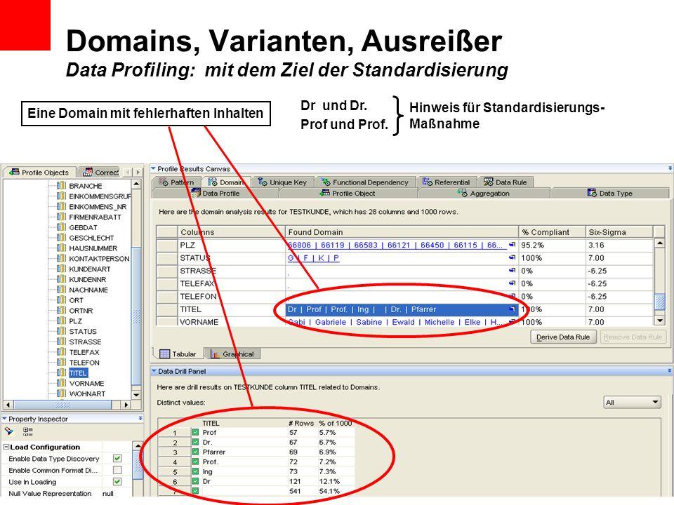Domains, Varianten, Ausreißer Data Profiling: mit dem Ziel der Standardisierung