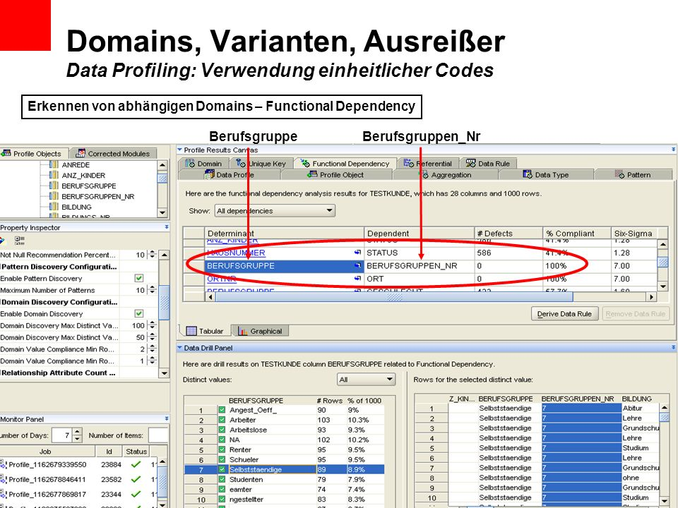 Domains, Varianten, Ausreißer Data Profiling: Verwendung einheitlicher Codes