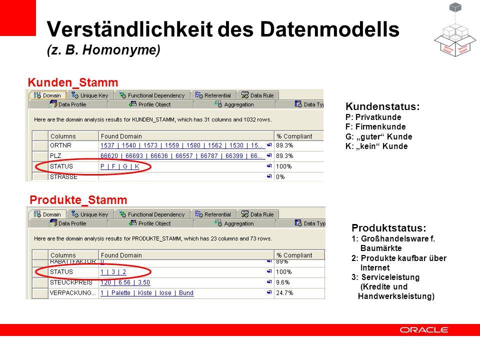 Verständlichkeit des Datenmodells (z. B. Homonyme)