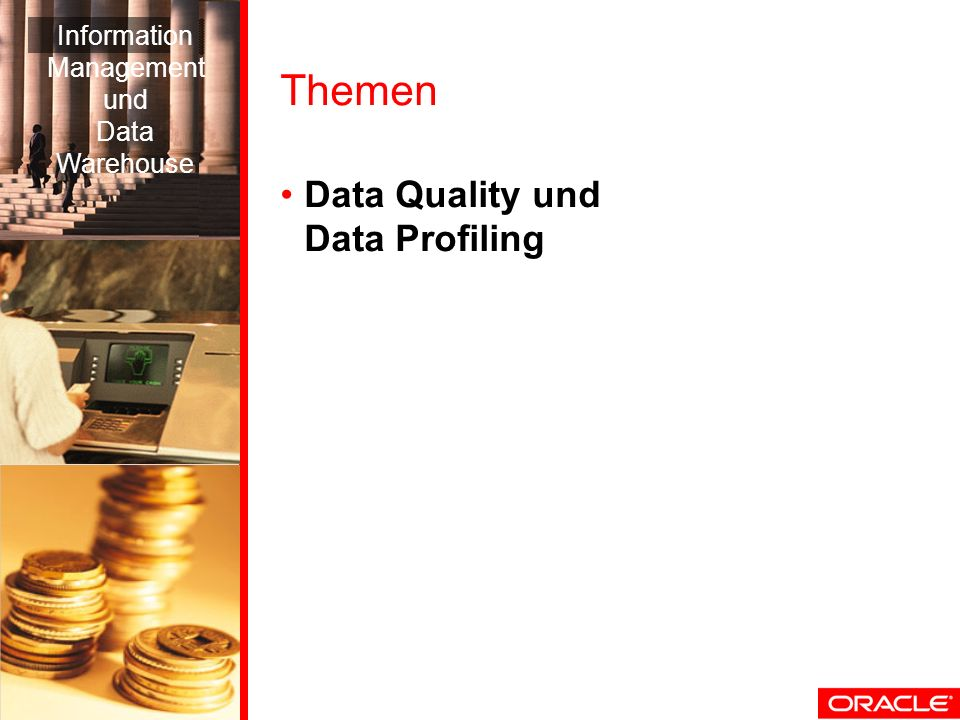 Themen Data Quality und Data Profiling Information Management und Data