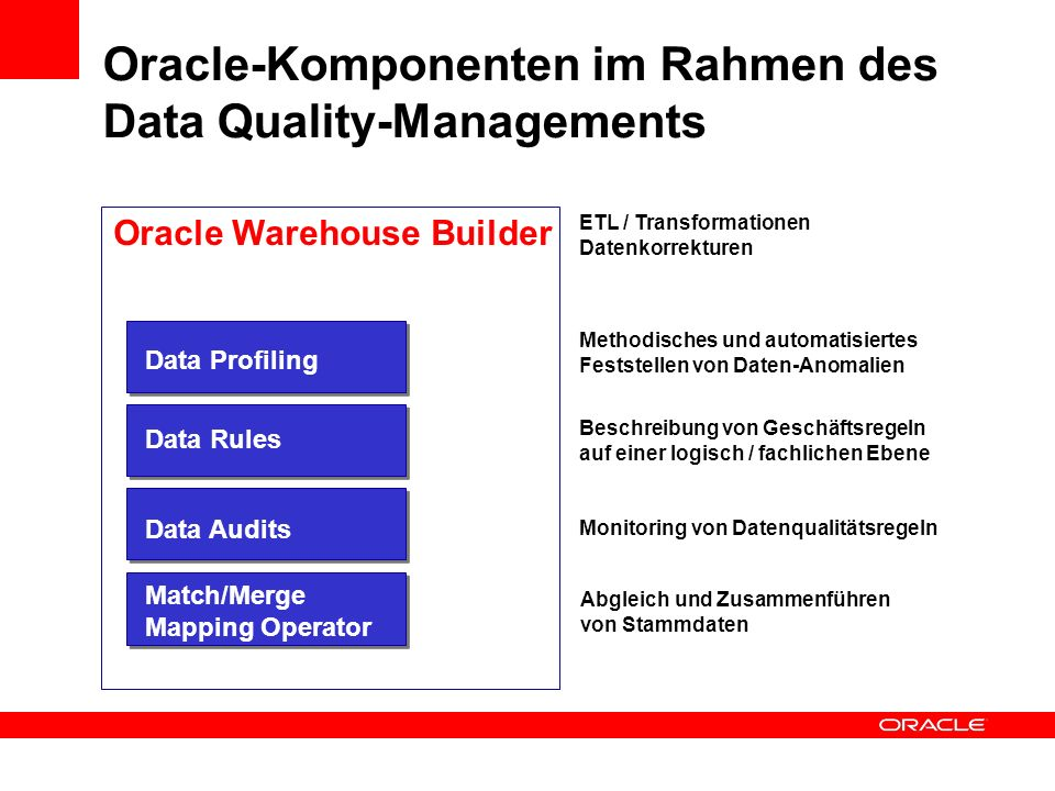 Oracle-Komponenten im Rahmen des Data Quality-Managements