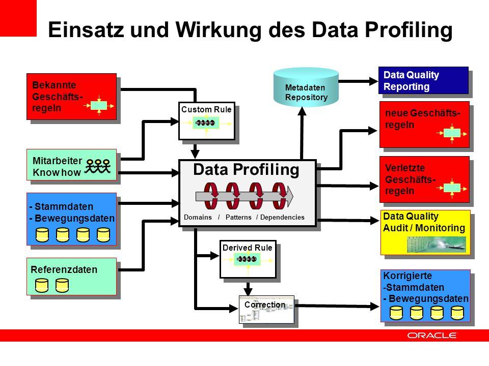 Einsatz und Wirkung des Data Profiling