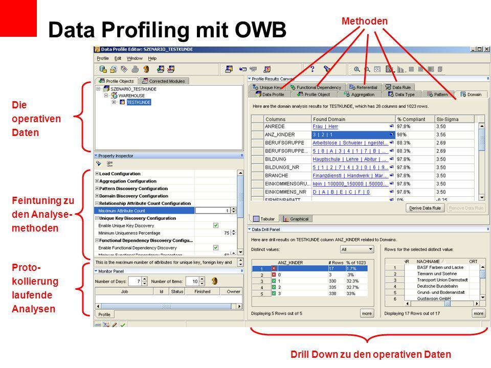 Data Profiling mit OWB Methoden Die operativen Daten Feintuning zu