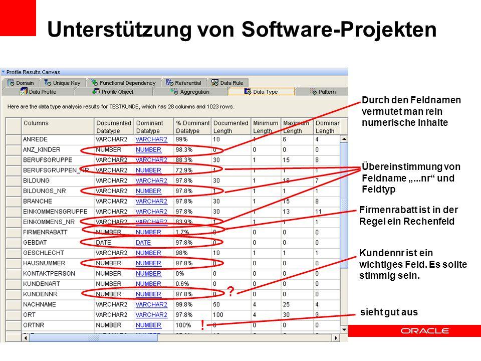 Unterstützung von Software-Projekten