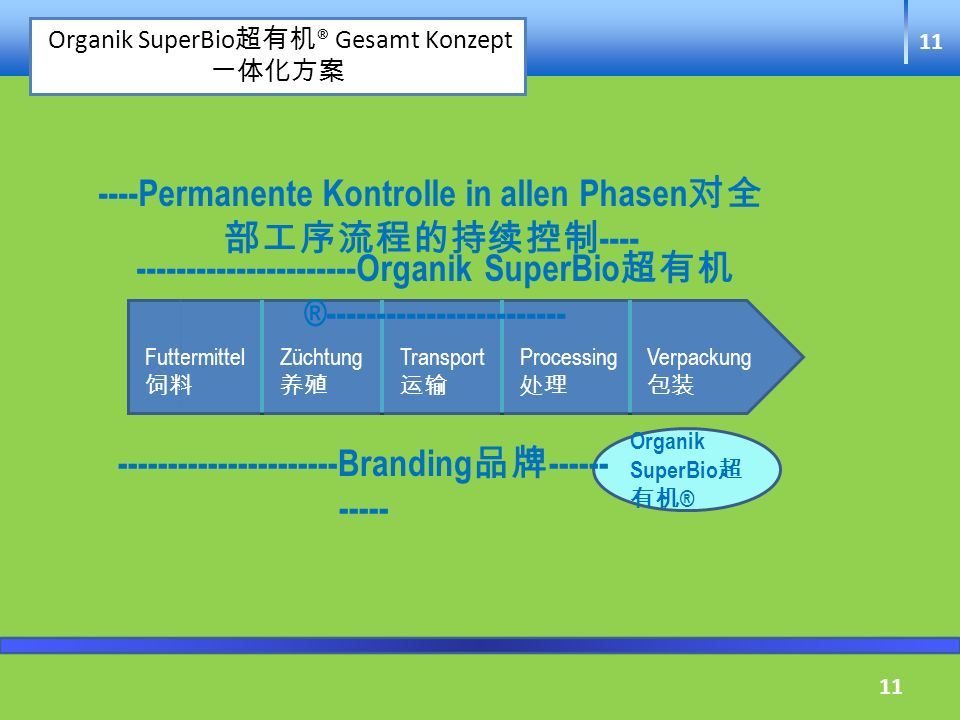 ----Permanente Kontrolle in allen Phasen对全部工序流程的持续控制----
