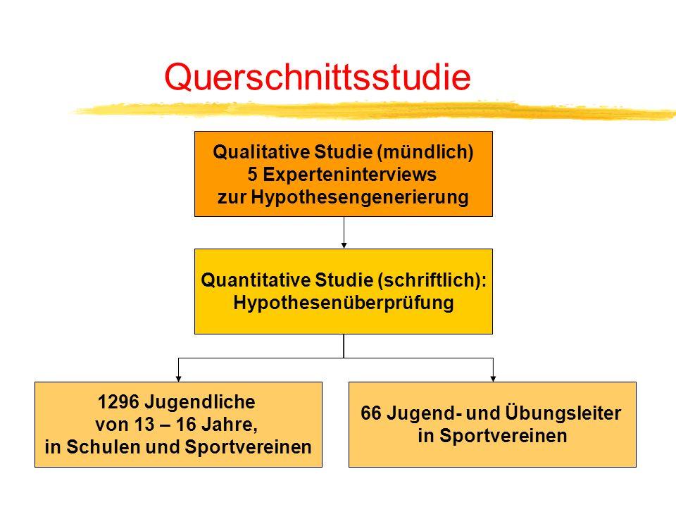 Querschnittsstudie Qualitative Studie (mündlich) 5 Experteninterviews