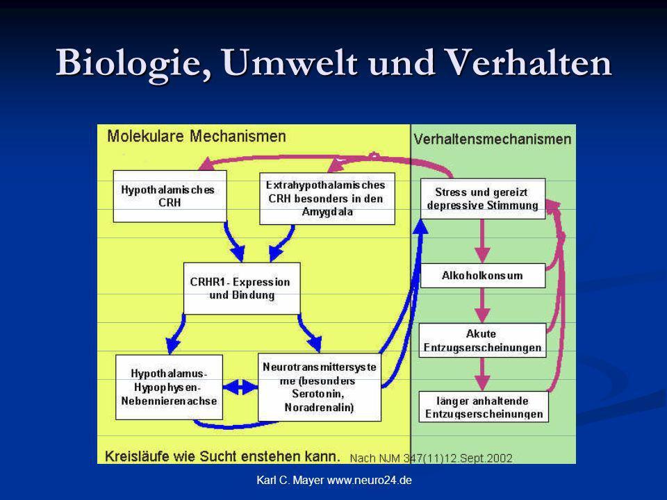 Biologie, Umwelt und Verhalten