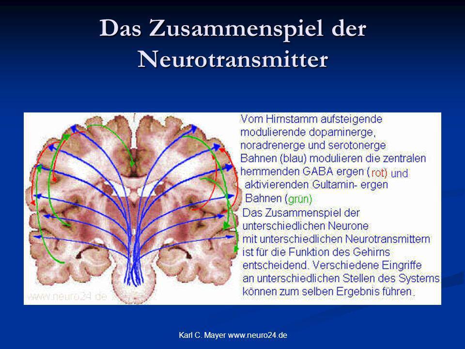 Das Zusammenspiel der Neurotransmitter