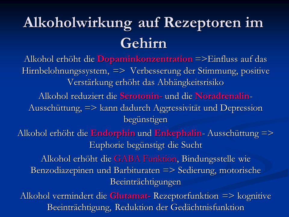 Alkoholwirkung auf Rezeptoren im Gehirn
