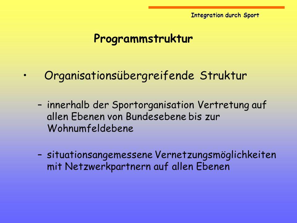 Organisationsübergreifende Struktur