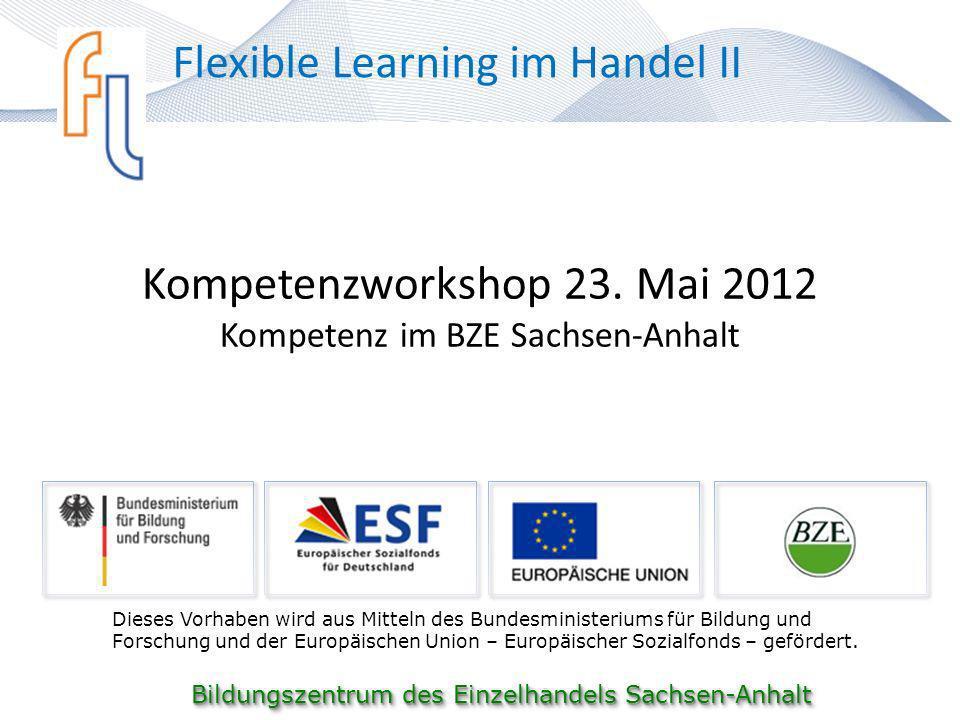 Kompetenzworkshop 23. Mai 2012 Kompetenz im BZE Sachsen-Anhalt